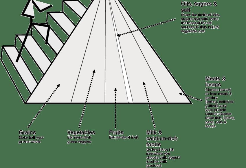 The 2005 USDA Food Pyramid (adapted) 18 Balance between