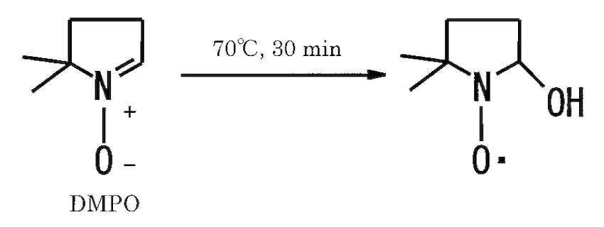 DMPO-OH radical formed in a heated aqueous solution of