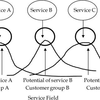 Flowchart of persona marketing using ethnographic