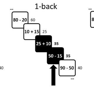 Behavioral performance. N-back task scores for each level