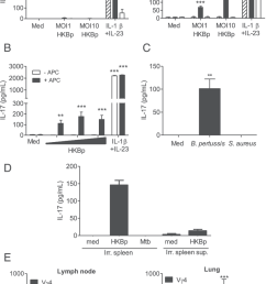 b pertussis infection promotes development of pathogen specific lung resident memory vg4 gd [ 850 x 1330 Pixel ]
