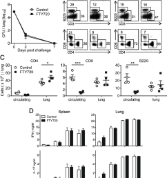 protection against reinfection with b pertussis is mediated by cd4 t cells that are recruited during primary infection and expand in the lungs following  [ 850 x 992 Pixel ]
