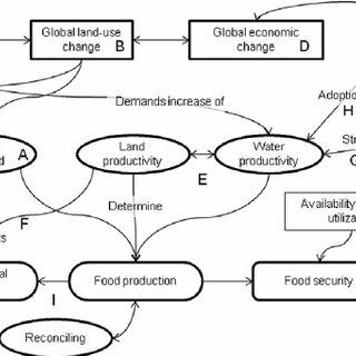 Concept map of relationships among global change processes