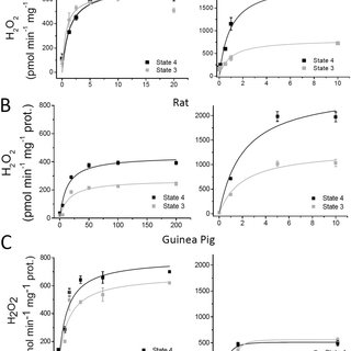 (PDF) Glutathione/thioredoxin systems modulate