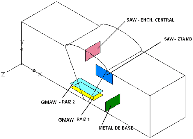 diagram of the location of the specimens taken from the