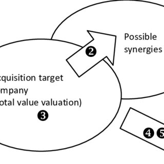 (PDF) Acquisition Strategy and Real Options