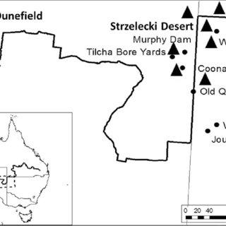 Map of the Strzelecki Desert and Moondiepitchnie Dunefield
