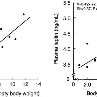 Relationship between plasma leptin concentration and