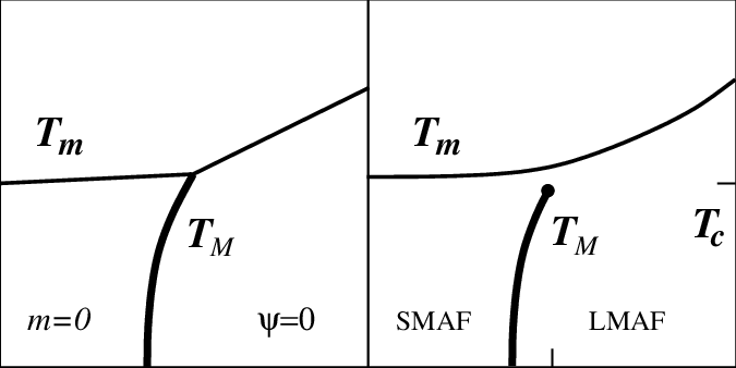 The phase diagram of the two-order parameter Landau