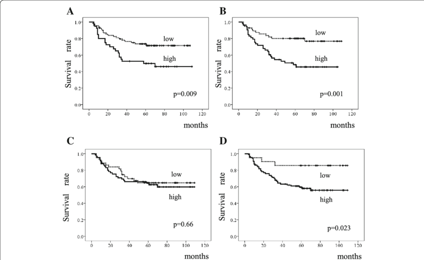 Survival of patients with diffuse-type gastric cancer
