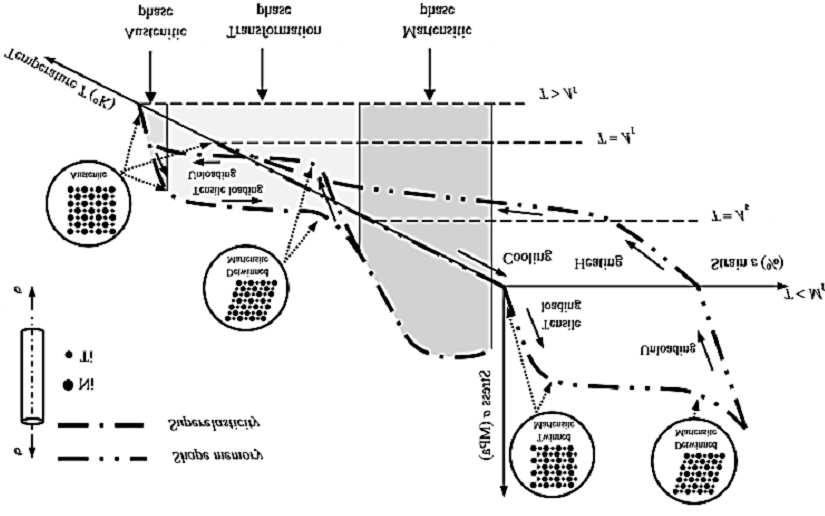 Stressstraintemperature diagram exhibiting the shape