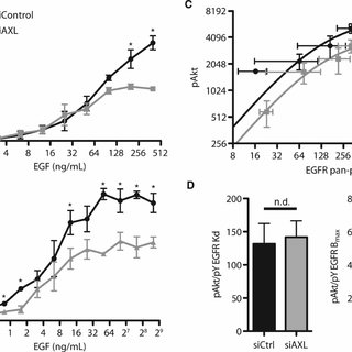 (PDF) The Receptor AXL Diversifies EGFR Signaling and