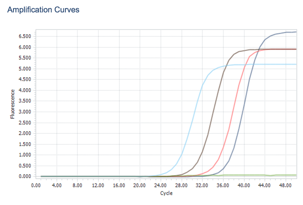 Qpcr Amplification Curve Height Difference In Standard Curve