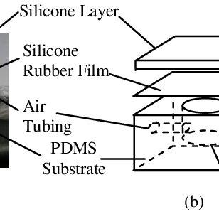 (PDF) Haptics for Multi-Fingered Palpation