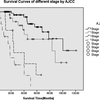 (PDF) TNM Staging of Pancreatic Neuroendocrine Tumors: An