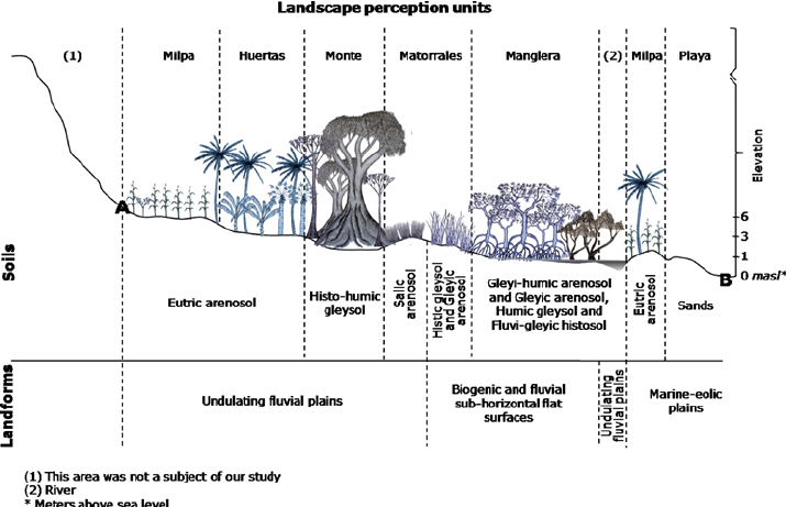 Cross-section schematic of the landscape perception unit