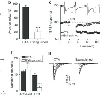 (PDF) ASIC1a regulates insular long-term depression and is