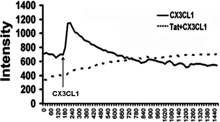 HIV-1 Tat disrupts CX3CL1-CX3CR1 axis in microglia via the