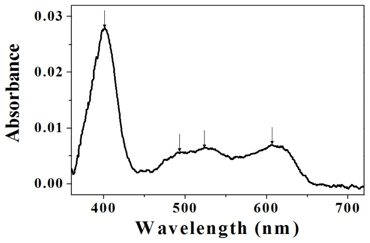 UV/VIS (Ultraviolet–visible) spectroscopy of myoglobin