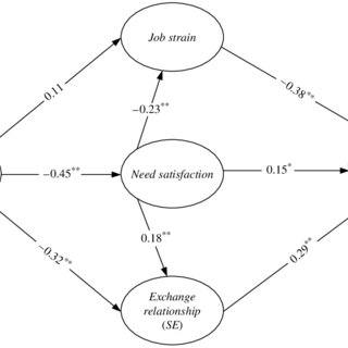 (PDF) Perceptions of Organizational Politics: A Need