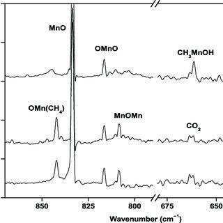 (PDF) Probing the intermediates in the MO + CH4 M + CH3OH