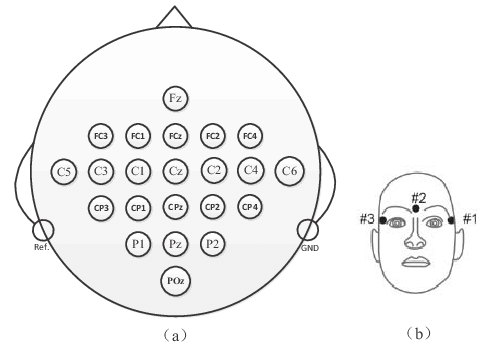 (a) The locations of the EEG electrodes. (b) The locations