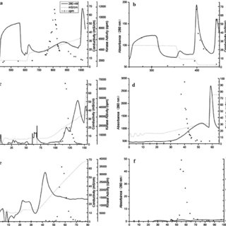 Activation of ZmMAPK5 by various abiotic stimuli. a EVects