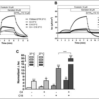 Effect of small molecule corrector treatment C4, C18, and