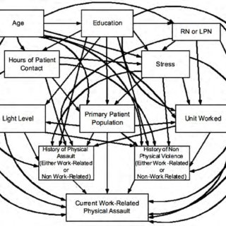 (PDF) Past violence and future work-related violence: A