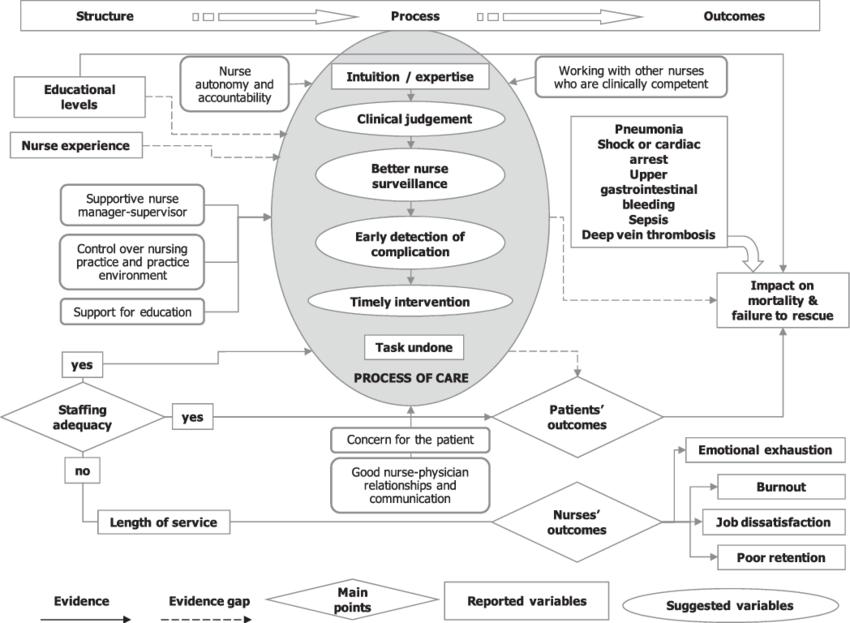 Tentative logic model: nurse staffing and patient/nurse