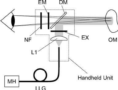 3 Lamp 1 Ballast Wiring Diagram 3 Bulb Lamp Wiring Diagram