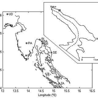 Along-basin shape of the fundamental mode of Bakar Bay