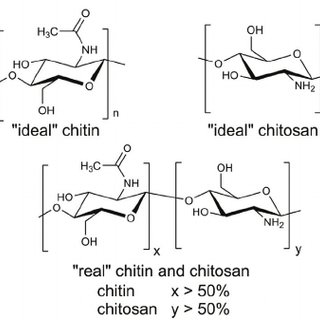 (PDF) Influence of the Chemical Structure and
