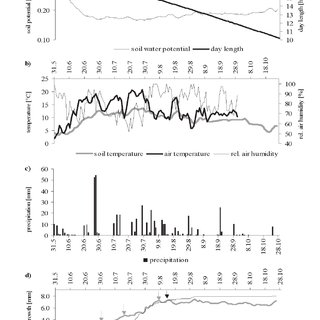 (PDF) Intraseasonal stem circumference oscilations: Their