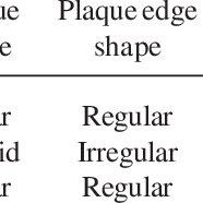 Baird-Parker Egg Yolk Tellurite agar cultured with three S