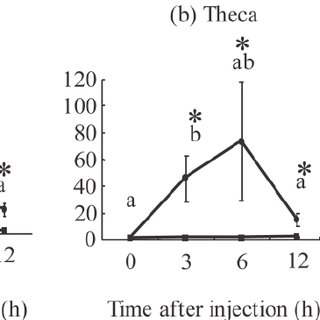 Western blot analysis of IL-1β and IL-6 in hen ovarian