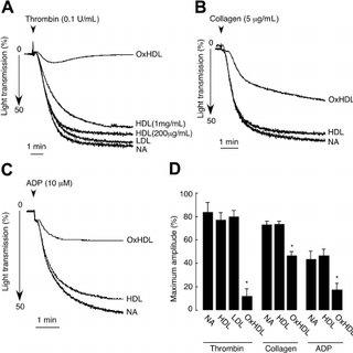 EMSA in CD36 ϩ / ϩ and Ϫ / Ϫ mice. A , NF-  B binding