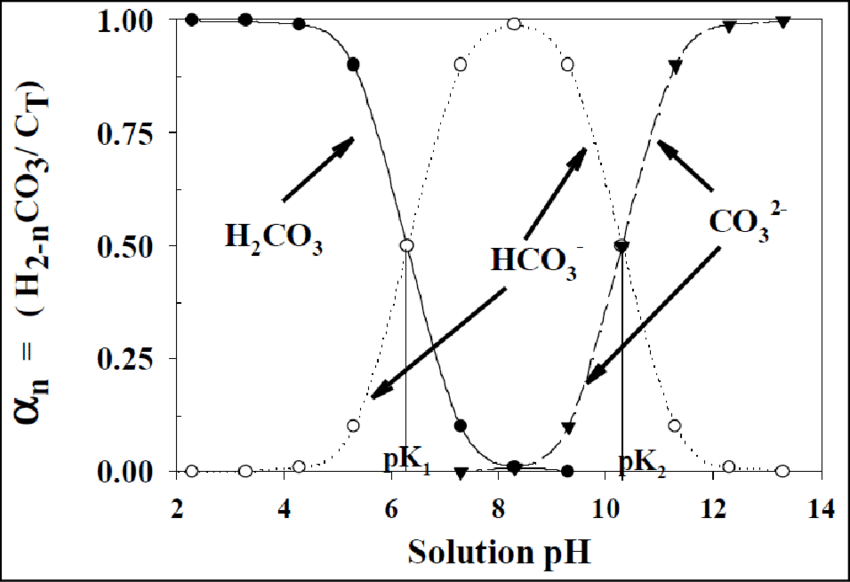 6: Distribution of carbonate species as a fraction of