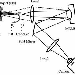 Simple Microscope Diagram Lighted Switch Wiring Optical Focus Control In A Download Scientific