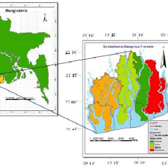 Diagram Of A Tropical Forest Thermostat Water Heater Wiring Sundarbans Mangrove (source: Bangladesh Department) | Download Scientific