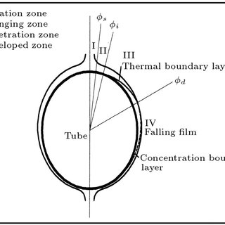 Variation of heat transfer coeecient i n t h e tube bundle