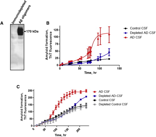 Seeding Activity in AD CSF Is Removed by Aβ Oligomers