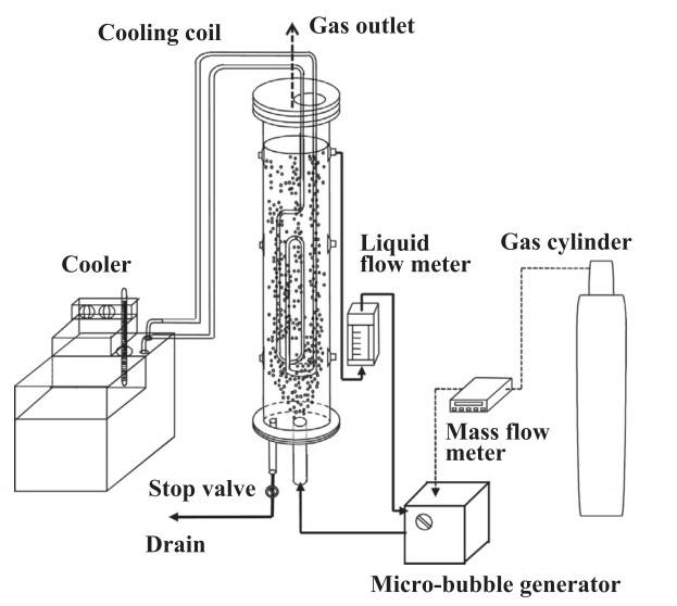 A schematic diagram of the RTD experimental apparatus by