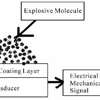 Block diagram representation of sensor based explosive