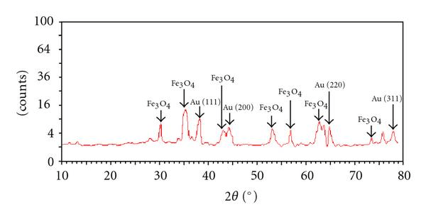 X-ray diffraction pattern of Au-Fe3O4 composite