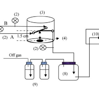 A schematic diagram of the experimental setup. (1) Oxygen