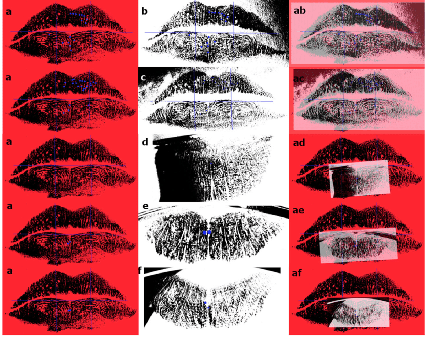 superimposition of lip prints