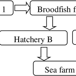 (PDF) First Description of a New Disease in Rainbow Trout