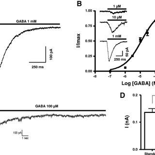 (PDF) Homomeric RDL and Heteromeric RDL/LCCH3 GABA