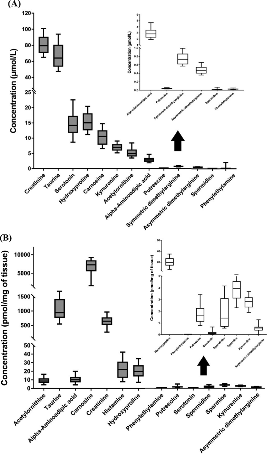 hight resolution of concentration of biogenic amines in a serum and b skeletal muscle of